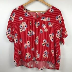 Madewell Red w/ Blue Flowers and Stripes